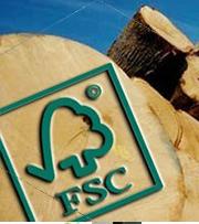 可持续经营的森林资源